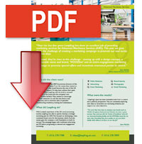 Download a full PDF of this case study